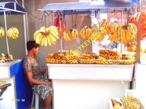 saging-industry
